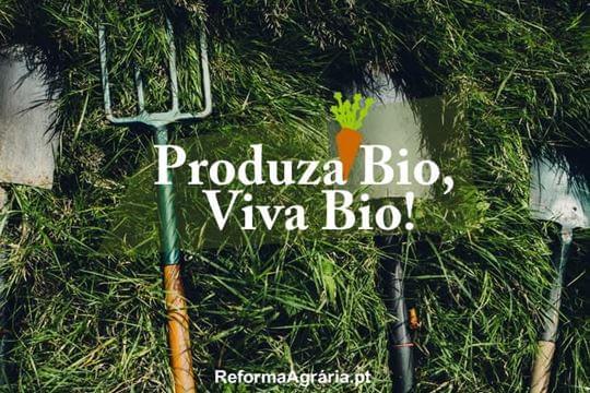 5 Boas Razões para Preferir a Agricultura em Modo de Produção Biológico