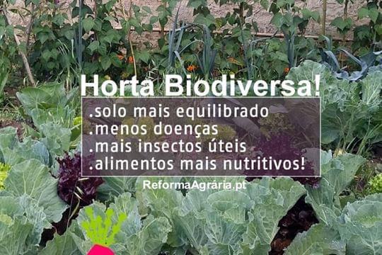 A Horta Biodiversa