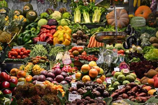 O Mercado de Produtos Hortofrutícolas