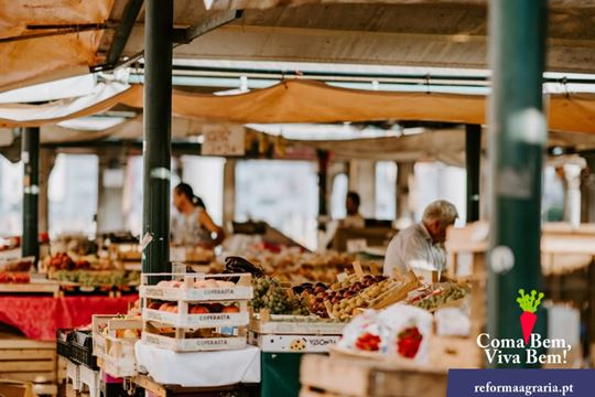 Reabertura das Feiras e Mercados do concelho de Faro