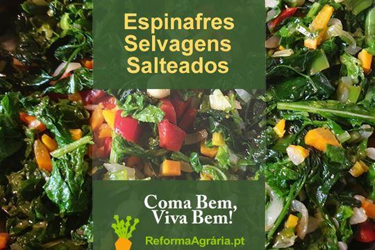 Receita de Espinafres Selvagens Salteados com Nabiças e Alho Francês