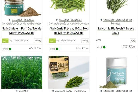 Sabe o que são plantas halófitas?