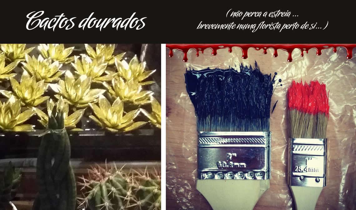 cactos dourados, não perca o filme numa florista perto de si
