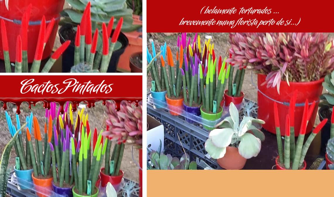 plantas torturadas