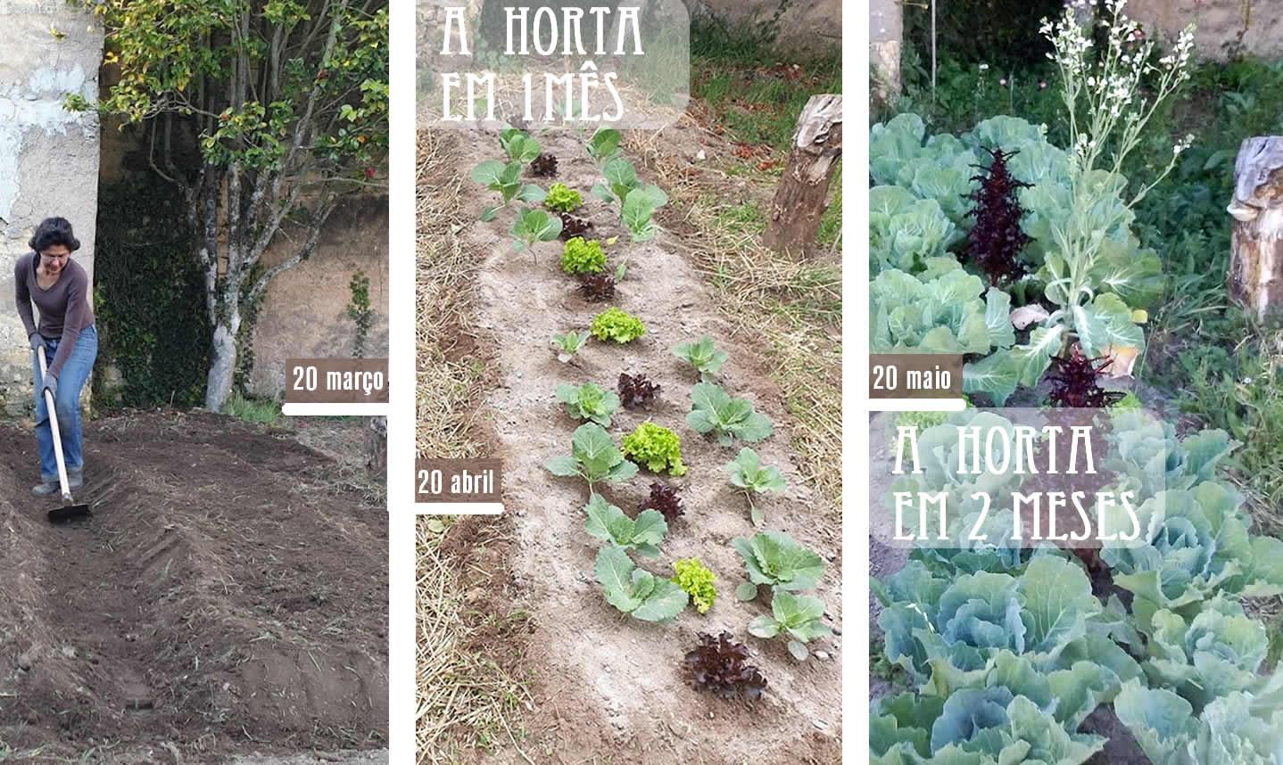 A Horta mês a mês | Reforma Agrária