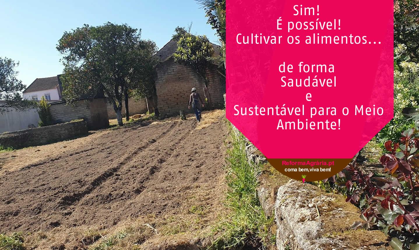 A Horta da Reforma Ágraria é a nossa visão de bem-estar e felicidade.