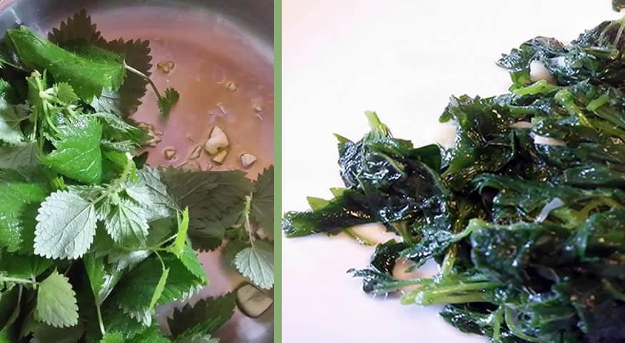 receita de urtigas salteadas com alho| Reforma Agrária