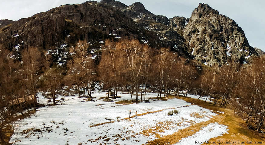 Dia Mundial da Neve | Reforma Agrária.pt