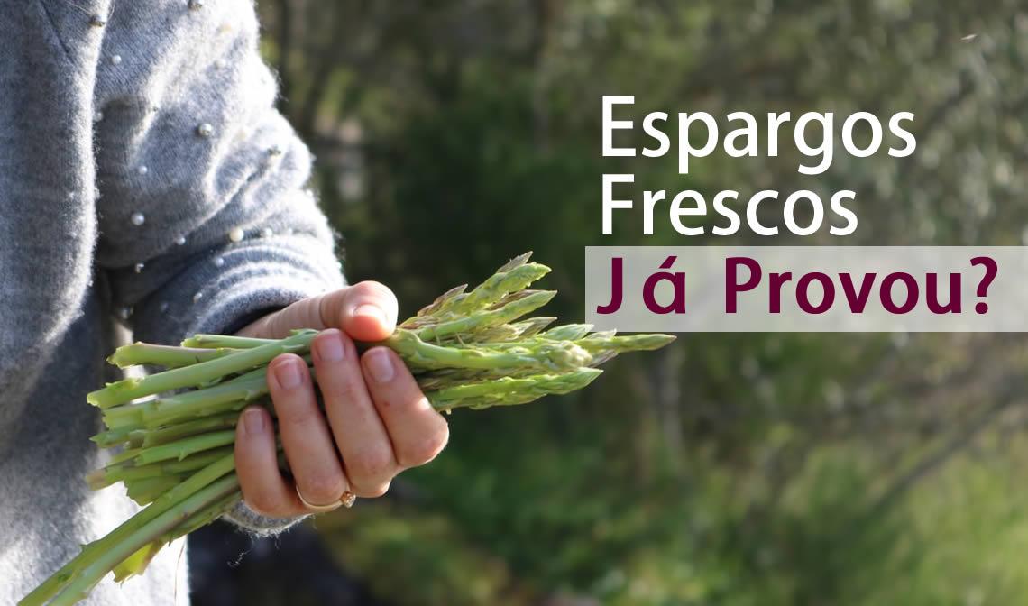 Já provou espargos frescos do produtor local | Reforma Agrária