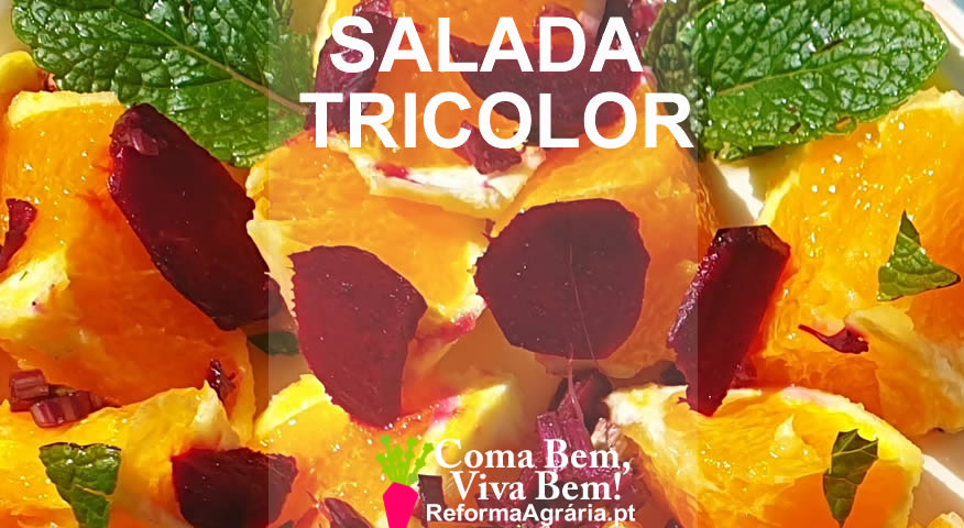 Uma salada simples e muito colorida!   Reforma Agrária