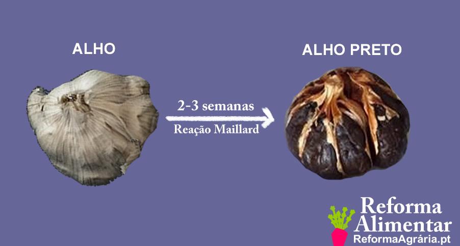 O que é o alho preto? Onde comprar | Reforma Agrária