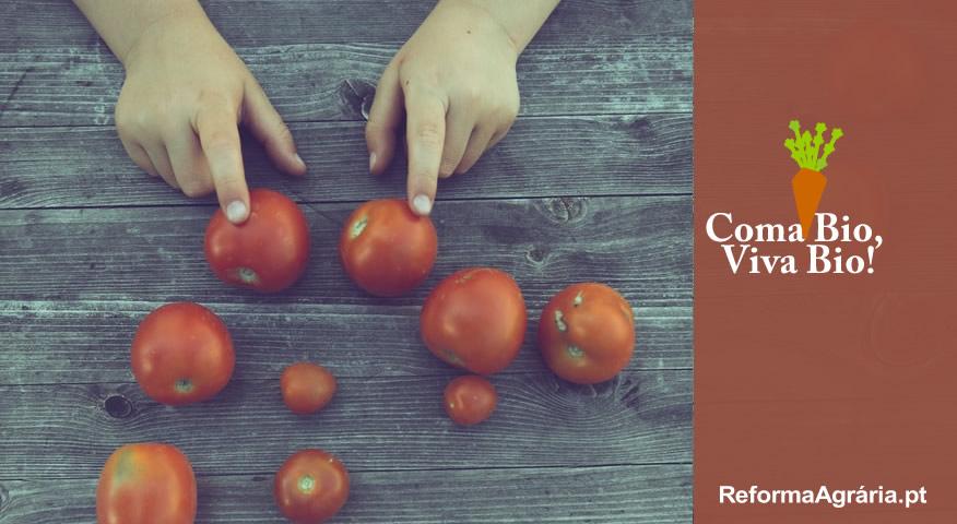 5 Boas Razões para Preferir a Agricultura em Modo de Produção Biológico | Coma Bio, Viva Bio -  Reforma Agrária