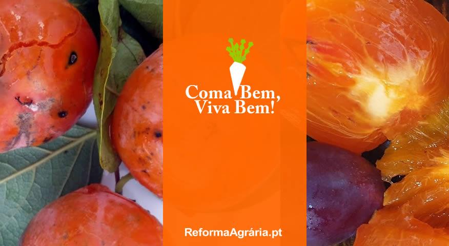 Fruta da Época: Novembro é o mês dos Dióspiros | Reforma Agrária