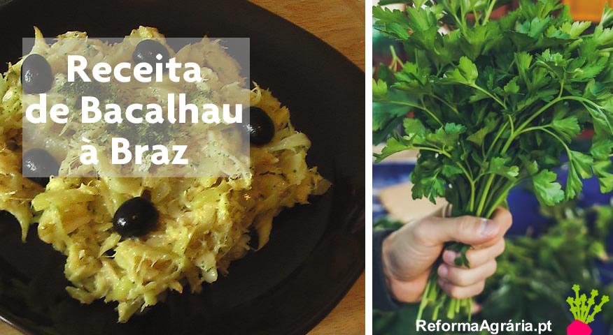 Receita de Bacalhau à Braz| Reforma Agrária