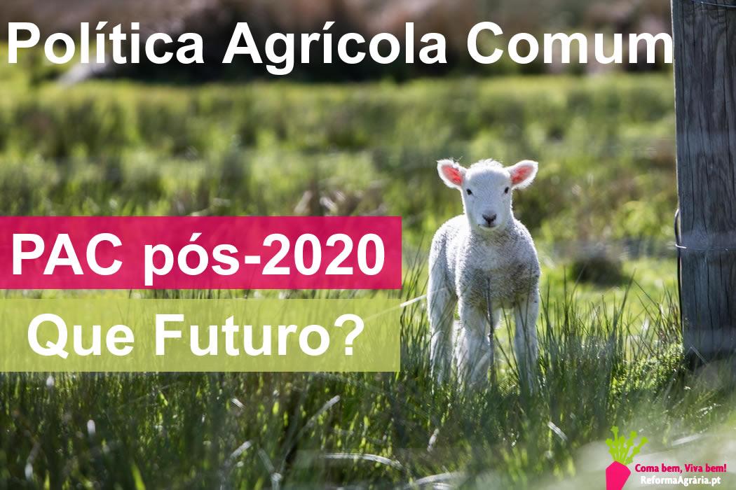 Política Agrícola Comum da UE: discussão sobre aspectos importantes que você precisa saber| Reforma Agrária