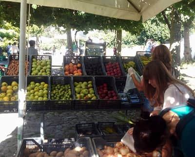 Feira de Produtos Biológicos do Parque da Cidade