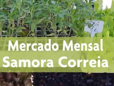 Mercado Mensal de Samora Correia