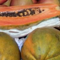 Papaias frescas