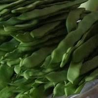Feijão-verde fresco