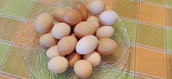 Ovos caseiros - emb 12 unidades