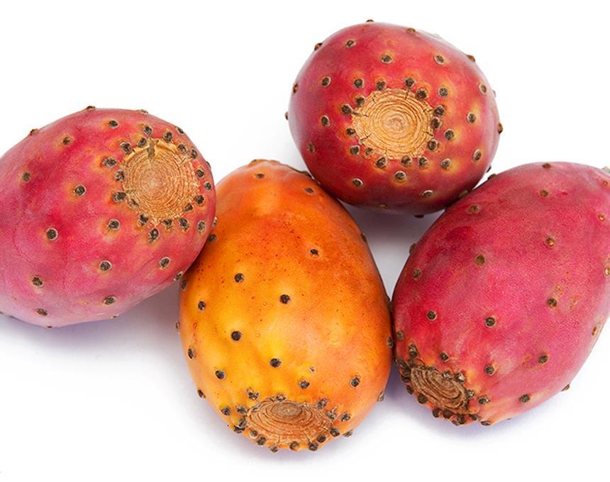 Figo da Índia Biológico - variedade verde, laranja e roxa