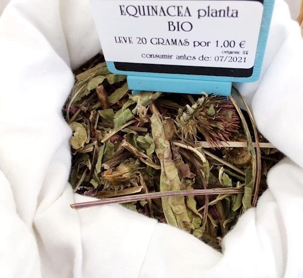 Equinácea Planta Bio - Venda a granel