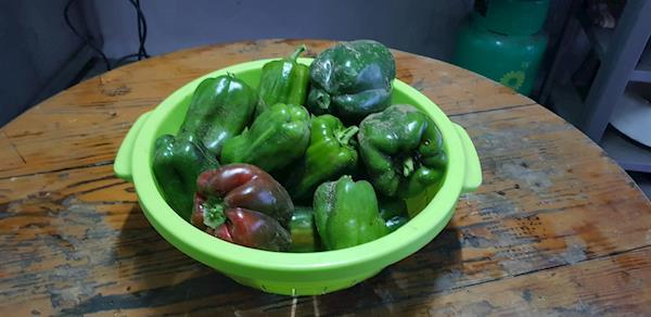 Pimentos Verdes