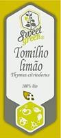 Tomilho limão - Thymus citriodorus