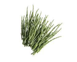 Salicórnia RiaFresh® fresca 250g