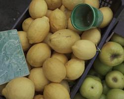Limões da Lavoura
