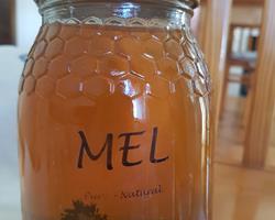 Mel Multiforal