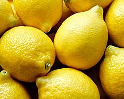 Limão ZERO PESTICIDAS