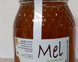 Mel Multifloral - frasco de 1kg