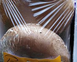 Cogumelo Portobello