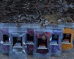 Pack Bio de Flores Comestíveis