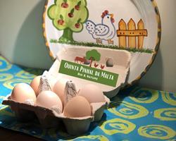 Dúzia de Ovos galinhas felizes - AMIBA