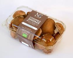 Cogumelos Shitake Biológicos