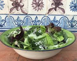 Salada de Alface Biológica
