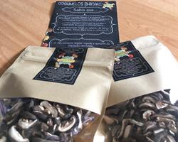 Cogumelos Shiitake BIO desidratados BIO