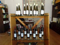 Vinho Verde - Barrio Branco