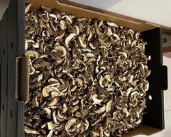 Cogumelos Shiitake Desidratados