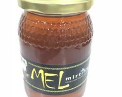 Mel de Mirtilo, emb. 500gr
