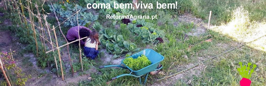 Sobre a Reforma Agrária