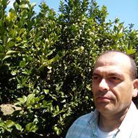 Artur Pereira