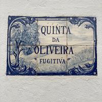 Quinta da Oliveira Fugitiva