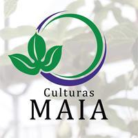 Milton Maia