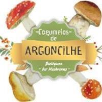 Cogumelos de Argoncilhe